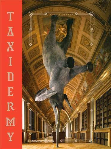 Taxidermy By Alexis Turner