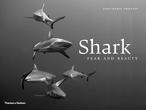 Shark By Jean-Marie Ghislain