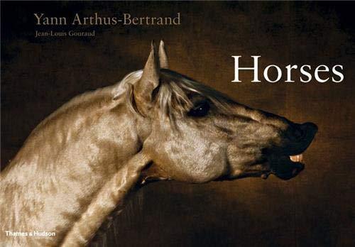 Horses By Jean-Louis Gouraud