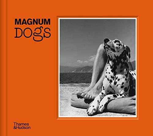Magnum Dogs By Magnum Photos