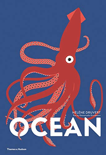 Ocean By Helene Druvert