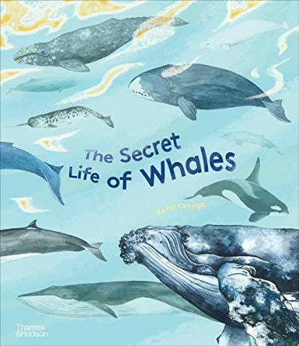 The Secret Life of Whales By Rena Ortega