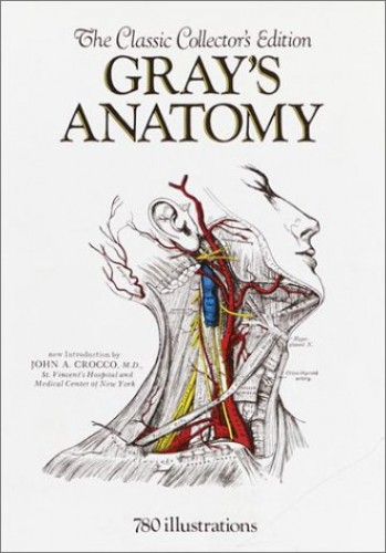 Grays' Anatomy By Henry Gray