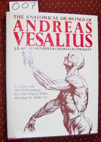 Anatomical Draw of Andreas Ves By Andreas Vesalius