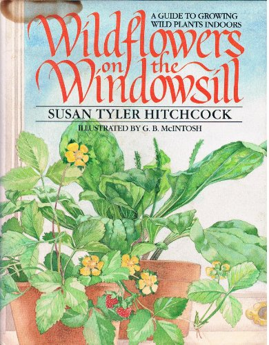 Wildflowers on the Windowsill By Susan Tyler Hitchcock
