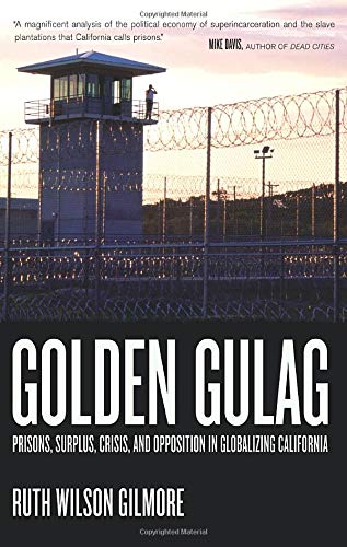 Golden Gulag: Prisons, Surplus, Crisis, and Opposition in Globalizing California by Ruth Wilson Gilmore