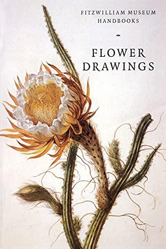 Flower Drawings By David Scrase