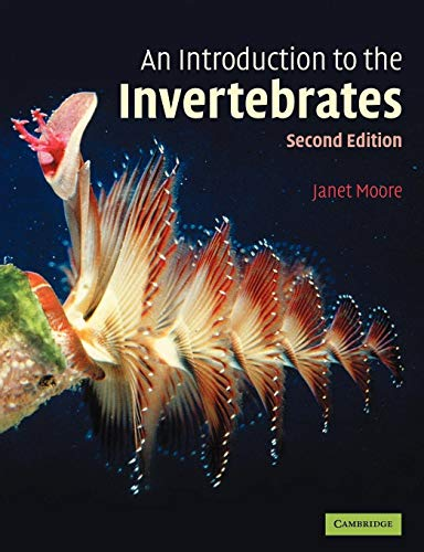 An Introduction to the Invertebrates By L.D.R. Wilford