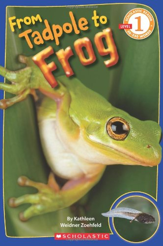 Scholastic Reader Level 1: From Tadpole to Frog By Kathleen Weidner Zoehfeld