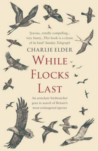 While Flocks Last By Charlie Elder