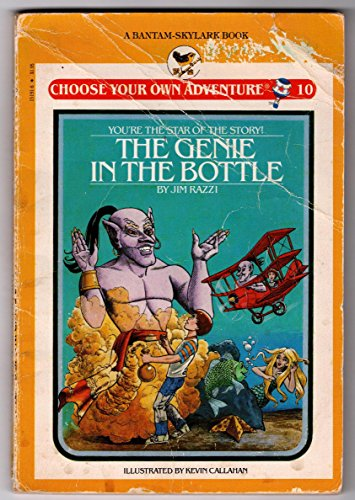 Genie in the Bottle (Skylark Choose Your Own Adventure) by James Razzi