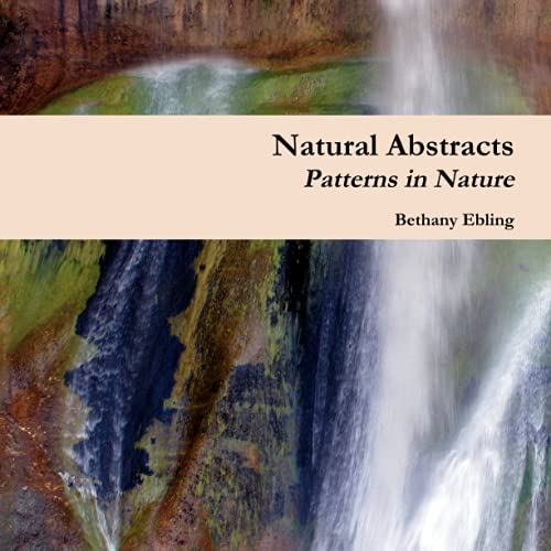 Natural Abstracts Patterns in Nature by Bethany Ebling
