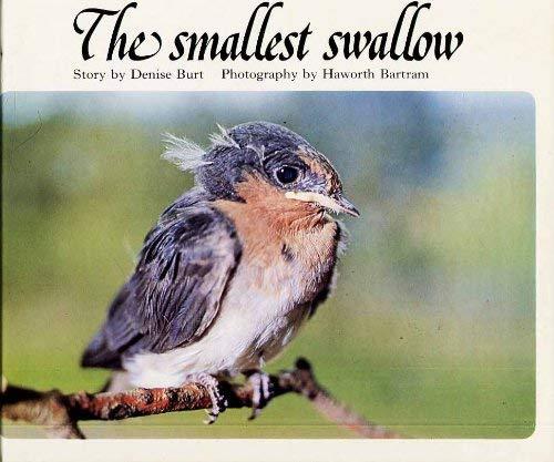 Smallest Swallow By Denise Burt