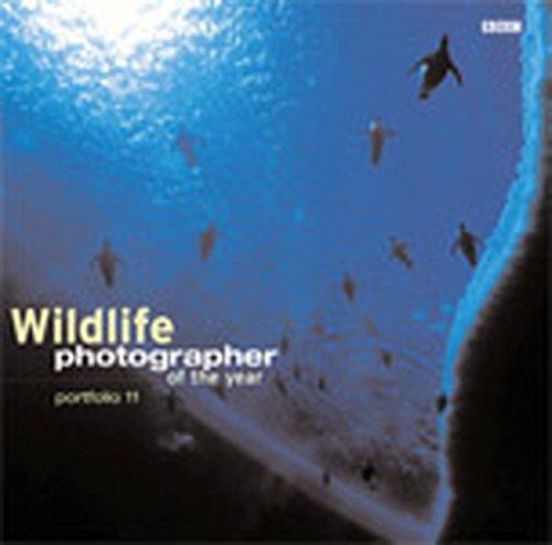 Wildlife Photographer Of The Year Portfolio 11 By Chris Packham
