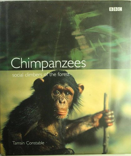 Chimpanzees: Social Climbers of the Forest By Tamsin Constable