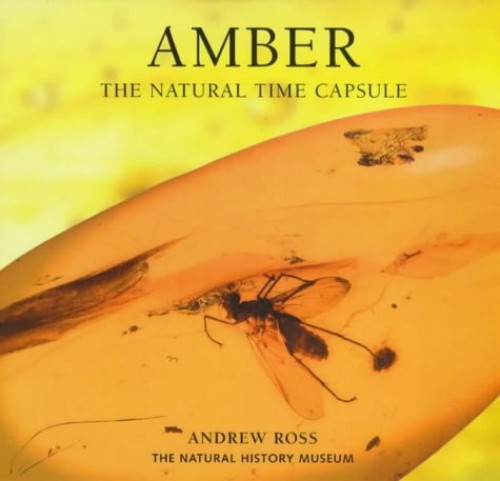 Amber: The Natural Time Capsule (Earth) By Andrew Ross