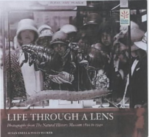 Life through a Lens By Susan Snell