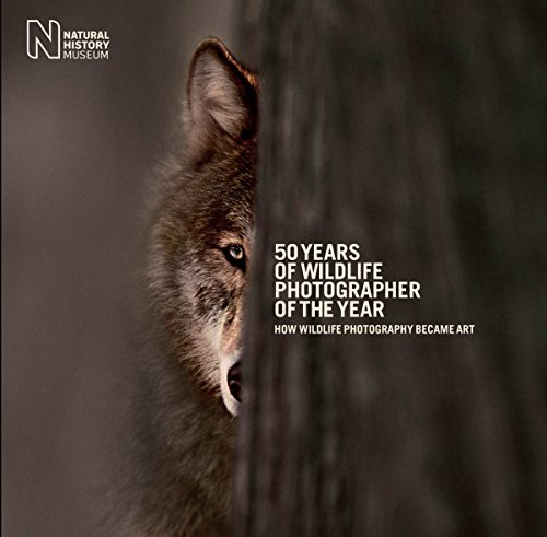 50 Years of Wildlife Photographer of the Year By Natural History Museum
