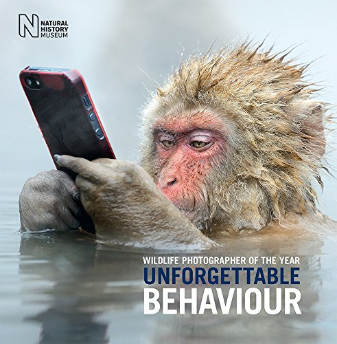 Wildlife Photographer of the Year: Unforgettable Behaviour By Natural History Museum