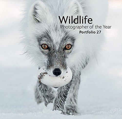 Wildlife Photographer of the Year: Portfolio 27 By Rosamund Kidman Cox