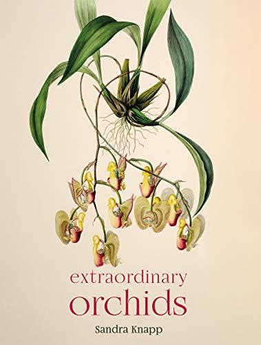 Extraordinary Orchids By Sandra Knapp