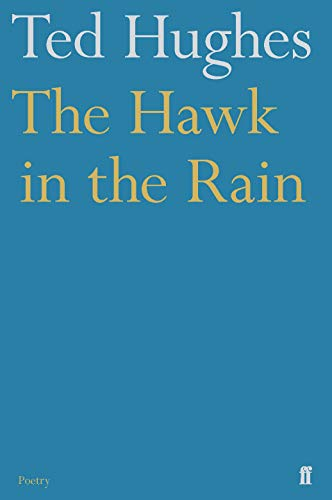 The Hawk in the Rain By Ted Hughes