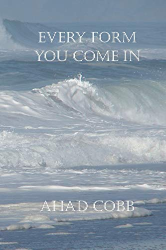 Every Form You Come In By Ahad Cobb