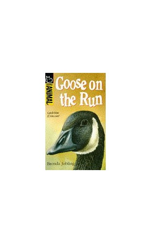 Goose on the Run by Brenda Jobling