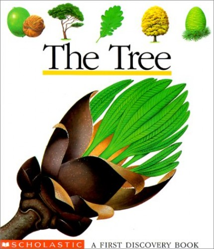 The Tree By Pascale de Bourgoing