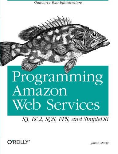 Programming Amazon Web Services By James Murty