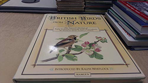 British Birds from Nature By Frances Mary Isabella Smith