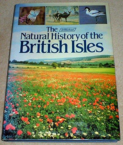 St Michael Nat Hist Br Isles By PAT MORRIS