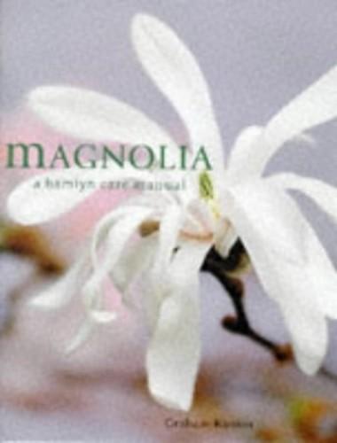 Magnolia By Graham Rankin