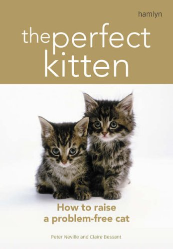 The Perfect Kitten By Claire Bessant