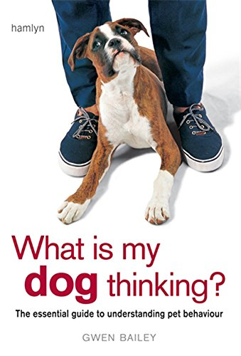 What is My Dog Thinking?: The Essential Guide to Understanding Your Pet by Gwen Bailey