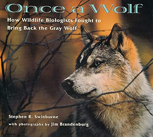 Once a Wolf By SWINBURNE