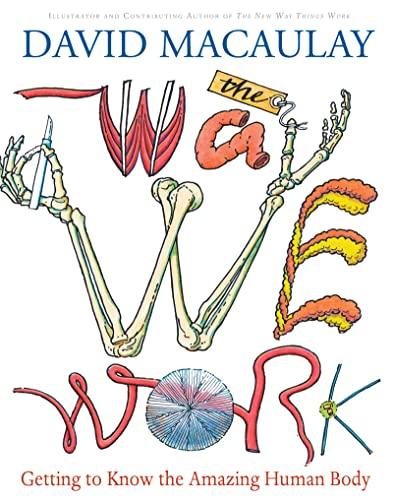 Way We Work von David Macaulay
