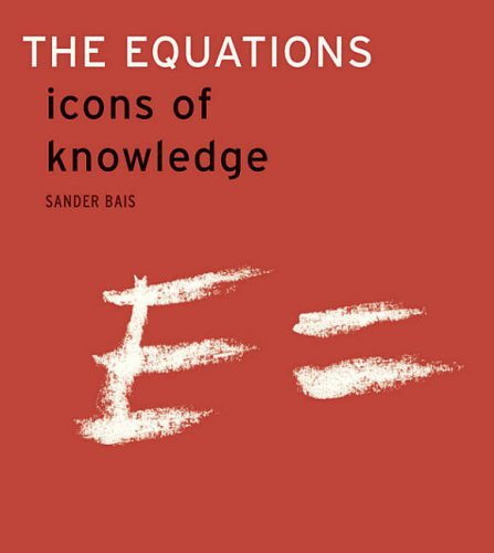 The Equations By Sander Bais