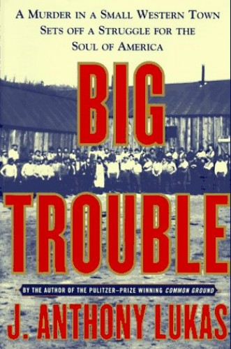 Big Trouble By J.A. Lukas