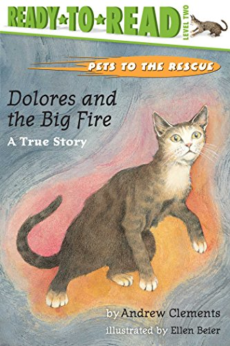 Dolores and the Big Fire By Andrew Clements