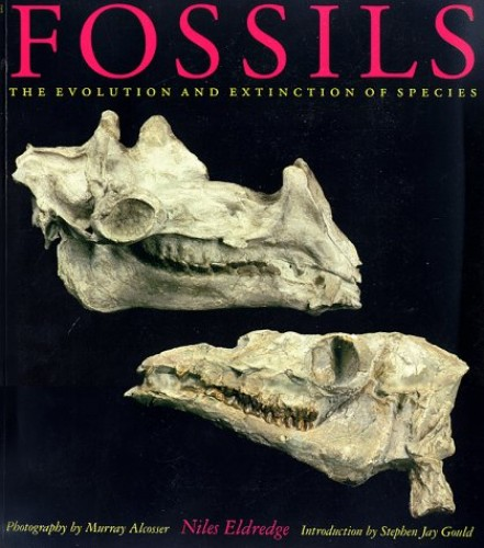 Fossils By Niles Eldredge