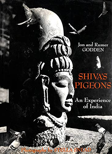 Shiva's Pigeons By Jon Godden