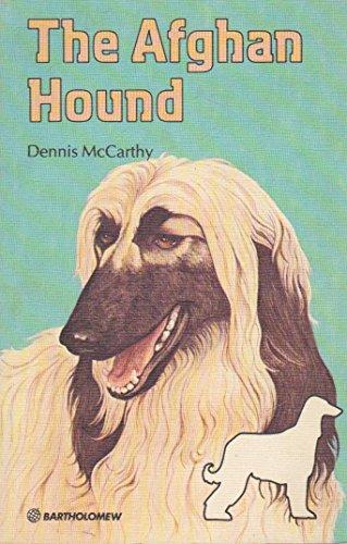The Afghan Hound By Dennis McCarthy