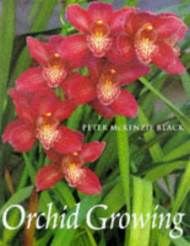 Orchid Growing By Peter McKenzie Black