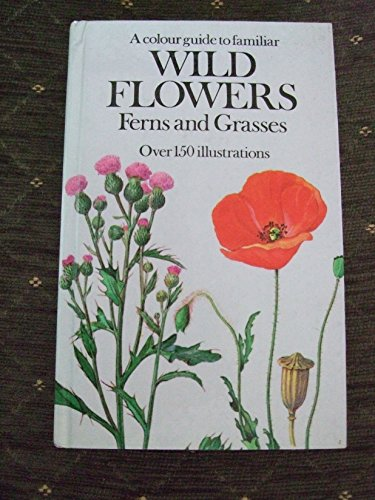 Colour Guide to Familiar Wild Flowers, Ferns and Grasses By Bohumil Slavik