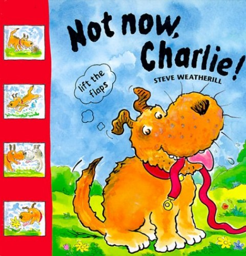 Not Now Charlie! By Stephen Weatherill