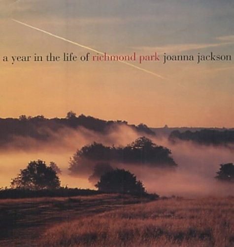 A Year in the Life of Richmond Park By Joanna Jackson