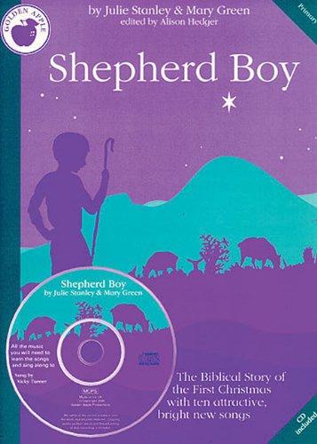 Julie Stanley: Shepherd Boy (Teacher's Book) (Four Decades) By Julie Stanley