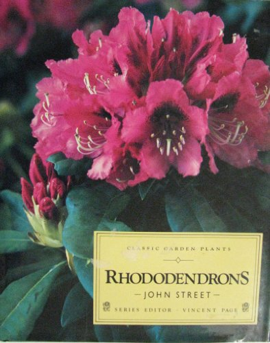 Rhododendrons by John Street