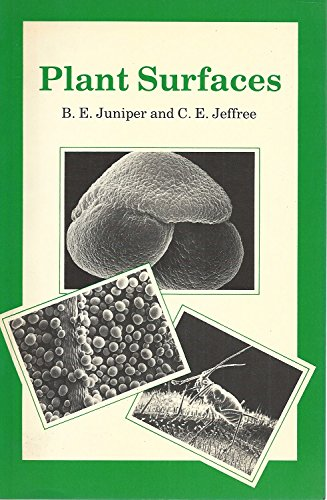 Plant Surfaces By Barrie Edward Juniper